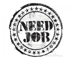 Seeking for receptionist, secretary or office staff