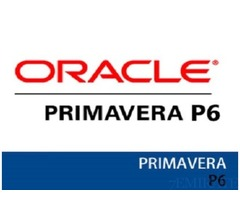 Freelancer Primavera Trainer Required for Syscoms Collage