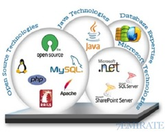 Any Kind of Web site & Software Devolepment