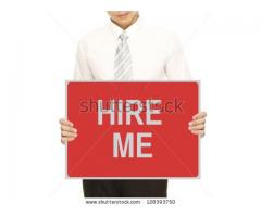 Professional Accountant Available