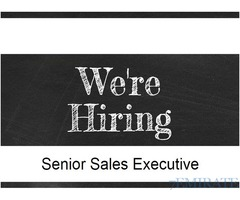 Sales Executive Require for a Jewellery Shop in Dubai