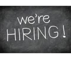 Admin and Accounting Staff Required in Dubai