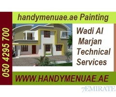 professional painting services 050 4295700