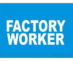 Factory Helpers Required for ISSACO GROUP